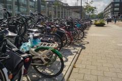 Blijdorp Bikes